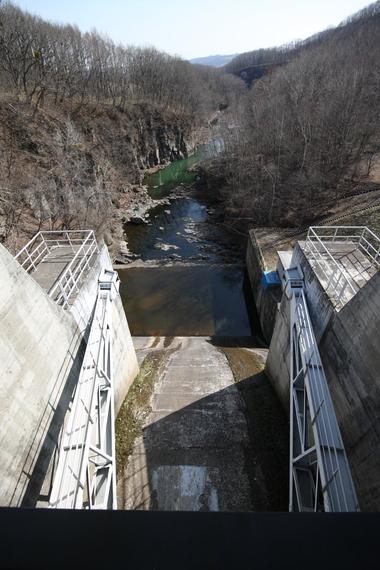 Dam_118_kakkomi